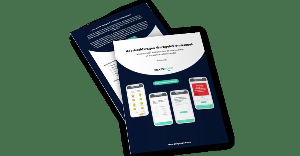 werkgeluk-onderzoek-voorbeeld-vragen-2daysmood